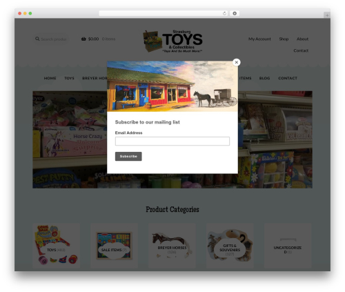 Storefront WordPress shop theme - strasburgtoys.com