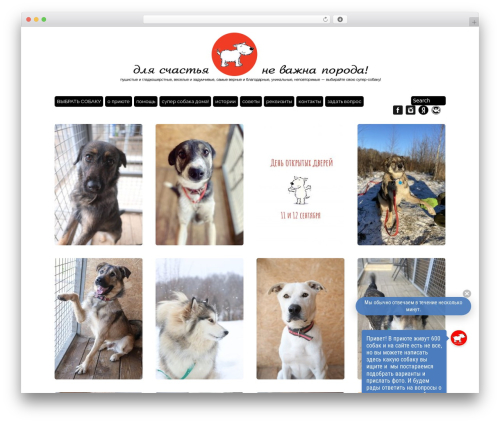 Best WordPress template Grid Theme Responsive - super-sobaka.ru