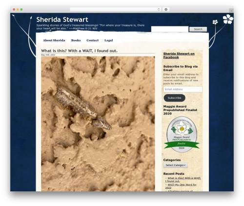 WordPress template Pretty Parchment - sheridastewart.com