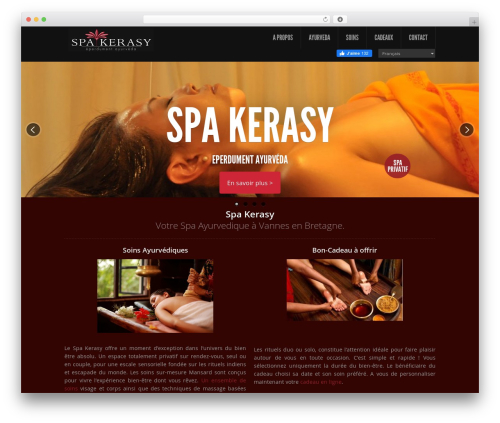 Theme WordPress Feather - spakerasy.com