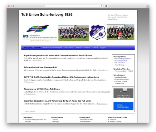 2010 Weaver WordPress template - tus-union-scharfenberg.de