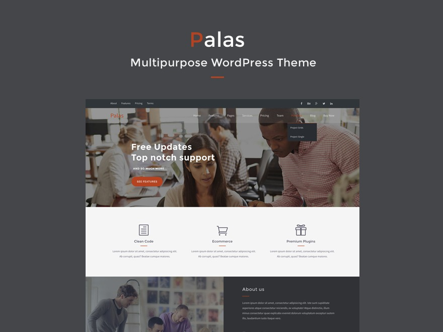Palas company WordPress theme