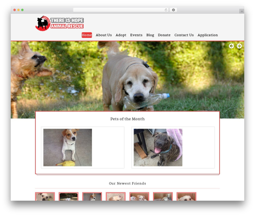 WordPress wp-xml-sitemap plugin - thereishopela.com
