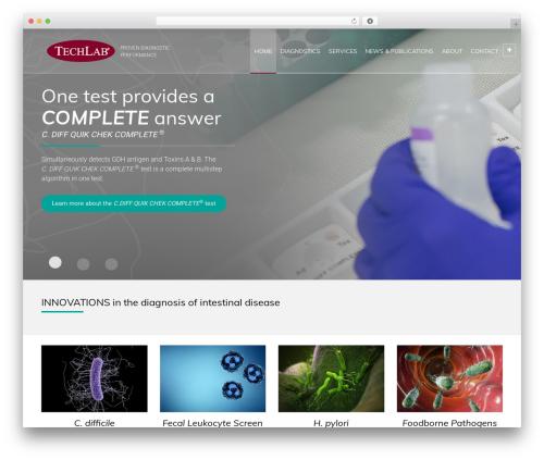 Theme WordPress RT-Theme 20 - techlab.com