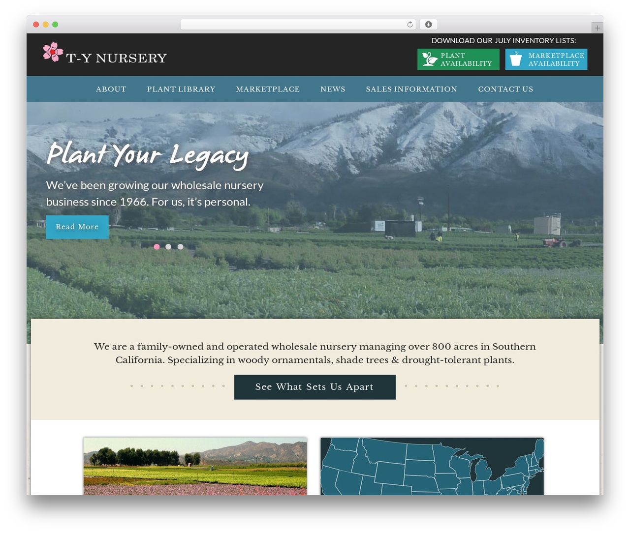 TY best WordPress template - tynursery.com