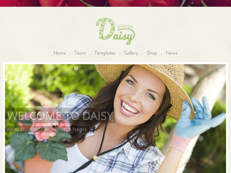 WordPress theme Daisy