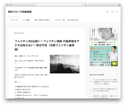 WordPress theme XeoryBase - tyou-ok.com