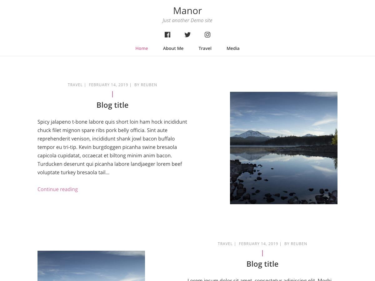 WordPress website template Manor
