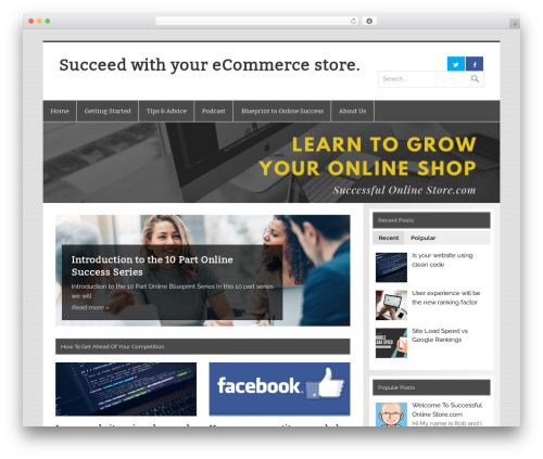 Smartline WordPress theme - successfulonlinestore.com