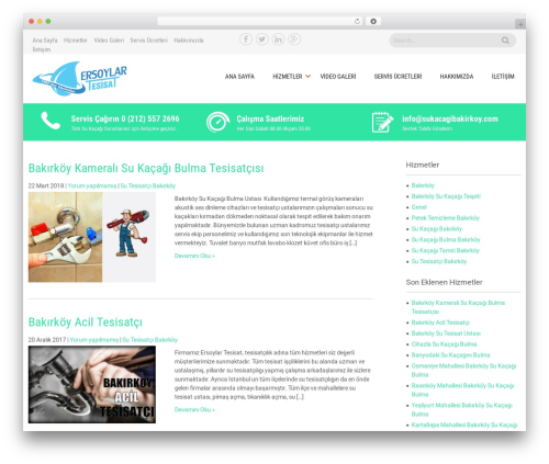 Sanitorium best free WordPress theme - sukacagibakirkoy.com