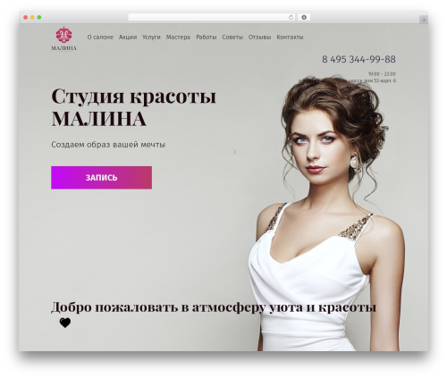 WordPress website template Malina - studio-malina.ru