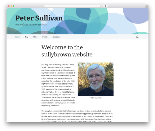 2013 Blue Sequence WordPress theme - sullybrown.com