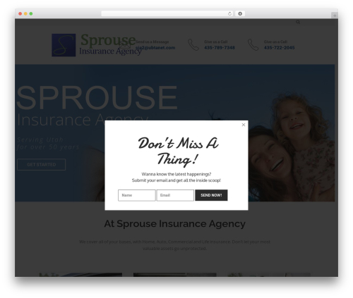 Theme WordPress SaturnThemes FinanceBank - sprouseinsuranceutah.com
