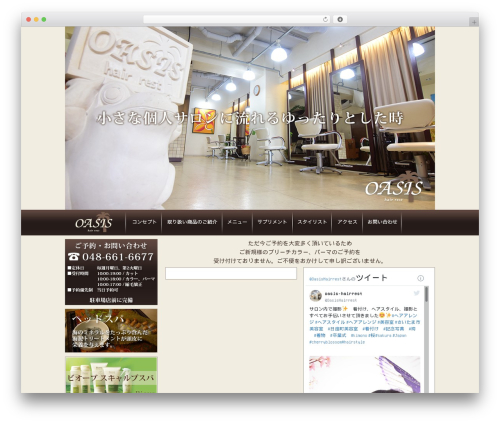 OASIS WordPress theme - oasis-hairrest.com