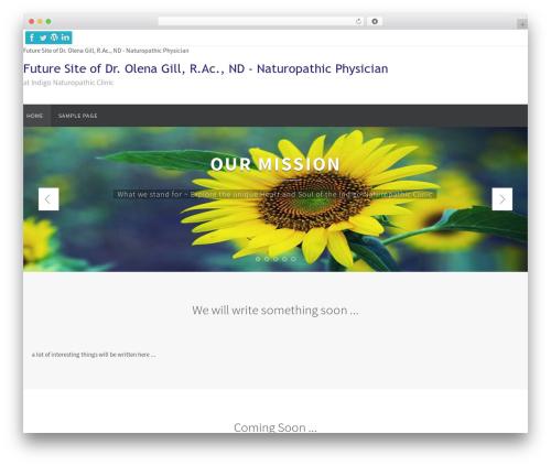 Nirvana WordPress theme - olenagillnd.com