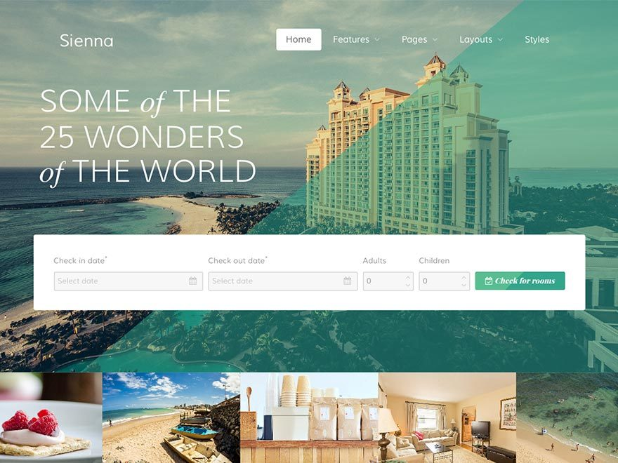 Sienna WP theme