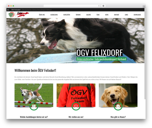 Subway WordPress theme - oegvfelixdorf.at