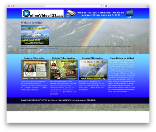 Executive Child Theme best WordPress template - onlinevideo123.com
