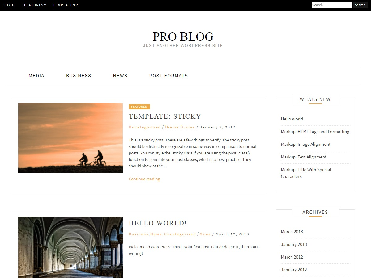 Pro Blog WordPress template for business