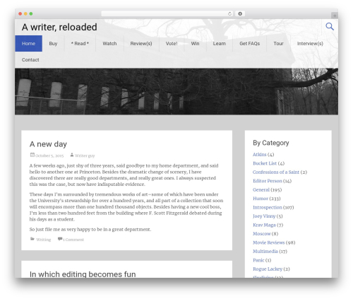 Radiate free WP theme - samhilliard.com