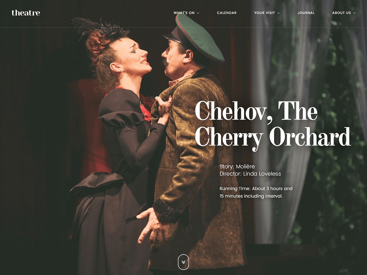 Theatre WP WordPress template for business