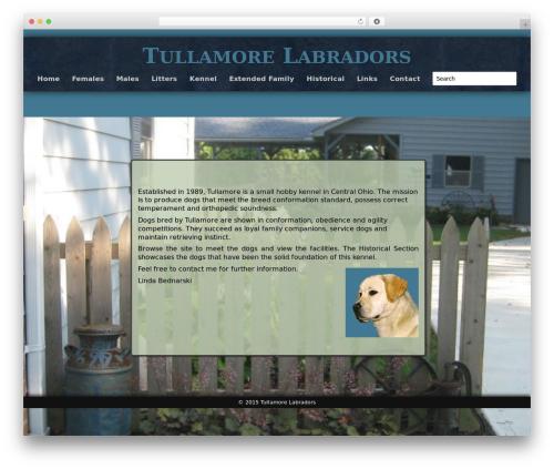 Theme WordPress Adventure - tullamorelabs.com