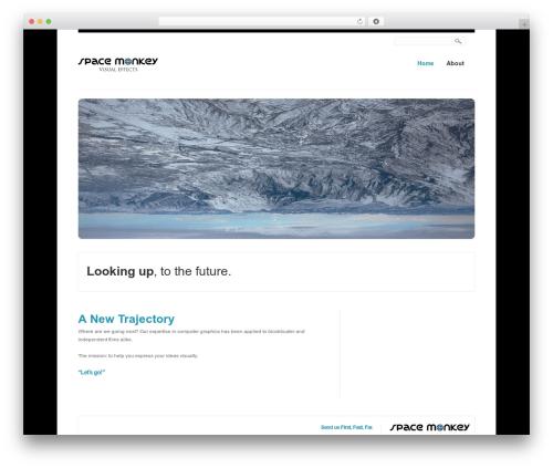 Creation best WordPress template - spacemonkeyfx.com