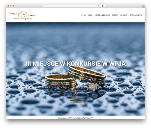 AccessPress Parallax WordPress template free download - openfoto.pl