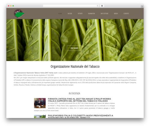 WordPress theme Subway - ontitalia.com