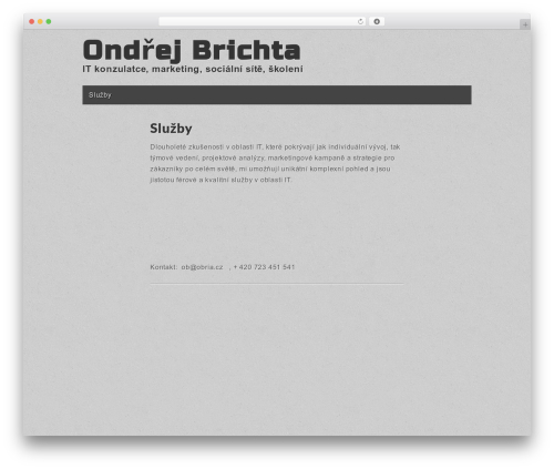 Gridiculous free WP theme - obria.cz