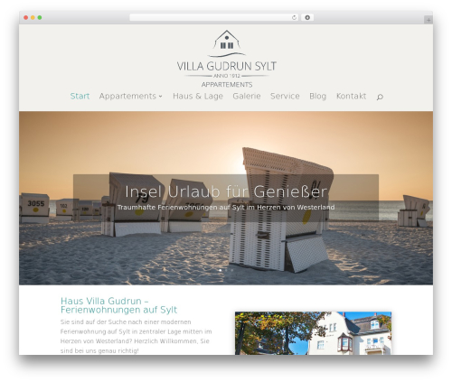 Best WordPress theme Divi - villagudrun.de