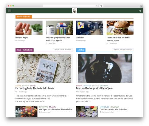 Free WordPress Meks Smart Social Widget plugin - tothemotherhood.com