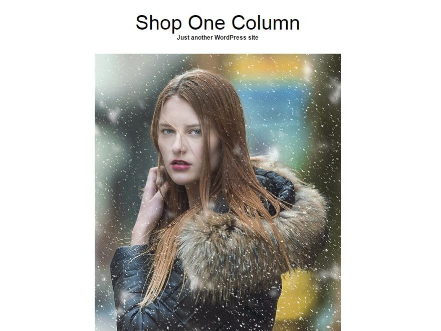 Shop One Column WordPress store theme