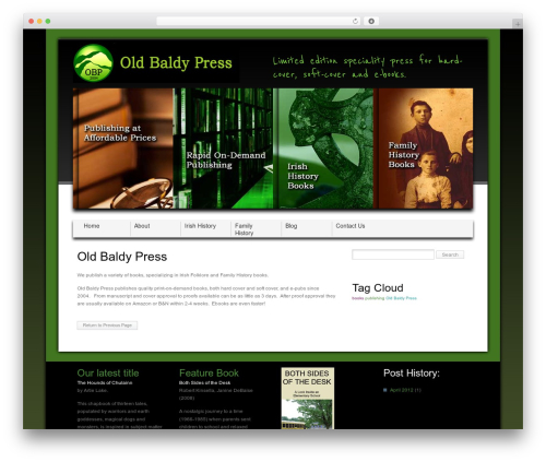 WordPress website template Layers Theme - oldbaldypress.com