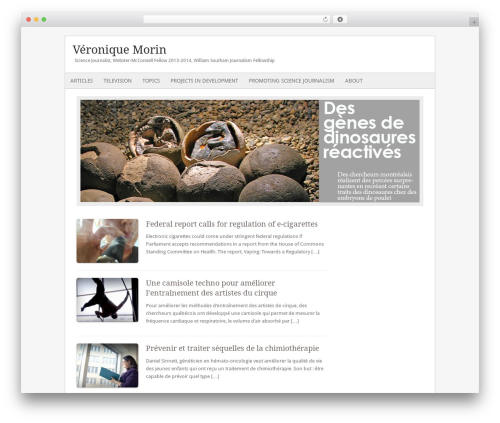 Fresh And Clean WordPress website template - veroniquemorin.com