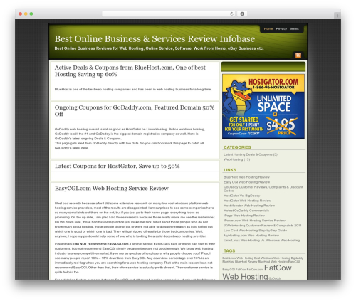 Affiliate Internet Marketing theme WP template - online.reviewinfobase.com