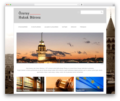 BrightBox WordPress theme - ozeray.com