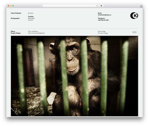OK best portfolio WordPress theme - oskarkullander.se/portfolio
