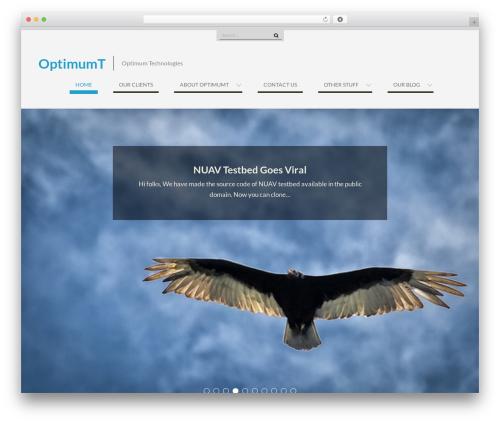 WEN Business free WP theme - optimumt.com