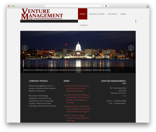 WordPress website template Executive Child Theme - vmllc.com