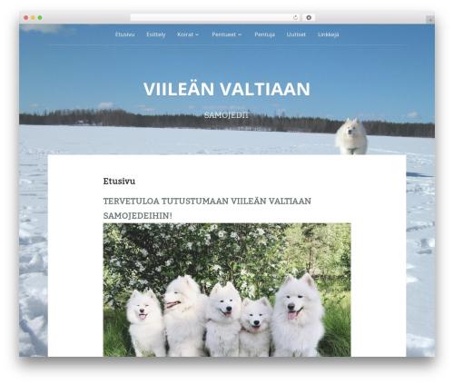 Padhang WordPress theme - viileanvaltiaan.com