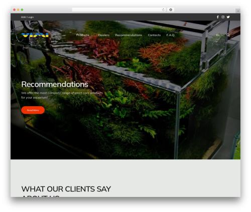 Revolution best WordPress template - vimi.lt