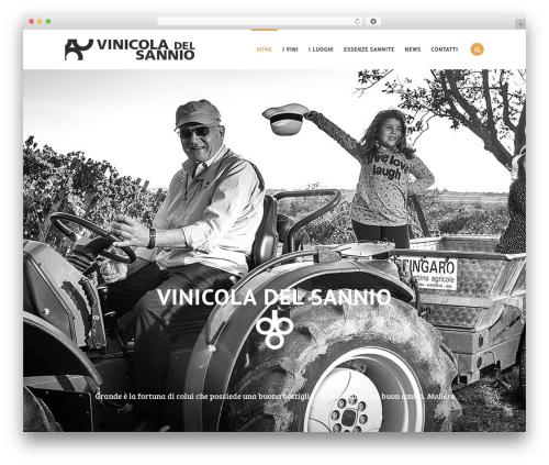 Best WordPress theme Swenson - vinicoladelsannio.it