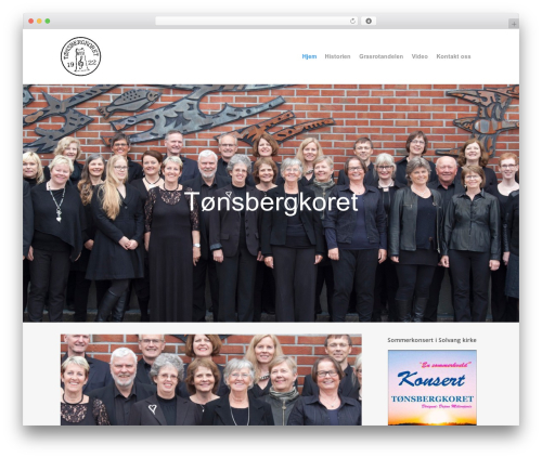 WordPress contus-video-gallery plugin - tonsbergkoret.no