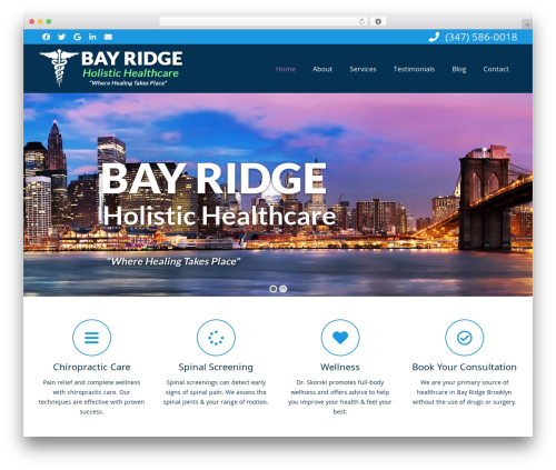Impreza WordPress theme design - thebrooklynchiropractor.com