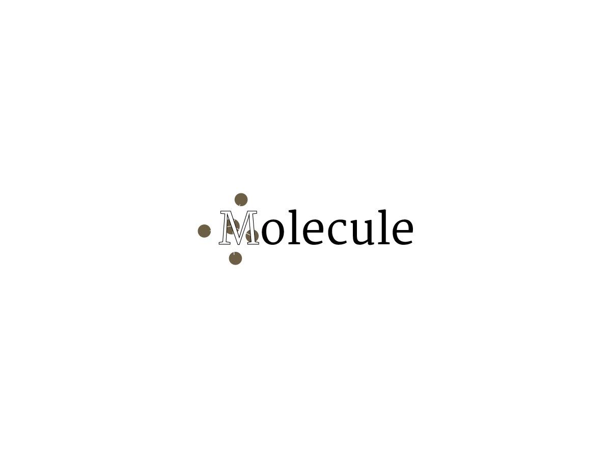Molecule WordPress ecommerce template