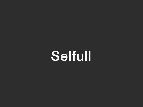 Selfull WP template