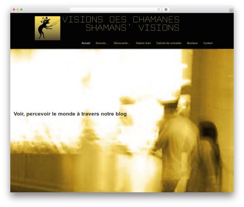Striking MultiFlex & Ecommerce Responsive WordPress Theme top WordPress theme - visionsdesshamanes.eu
