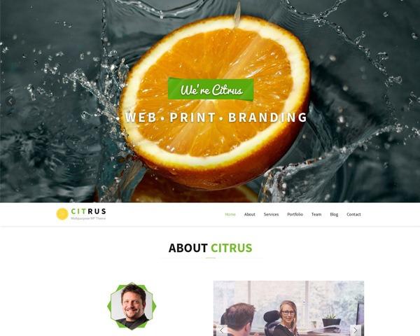 Citrus WordPress portfolio theme