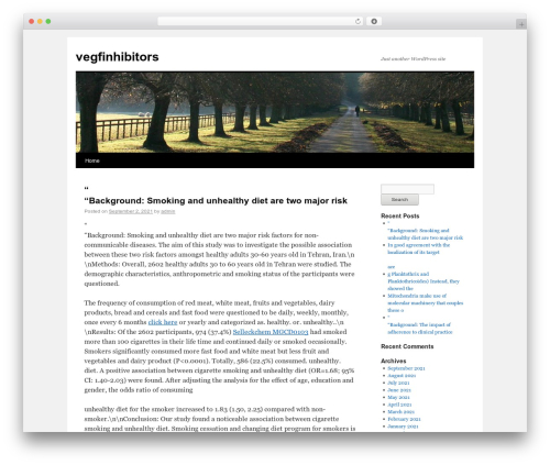 Twenty Ten WordPress free download - vegfinhibitors.com